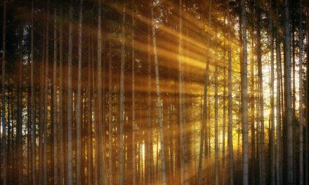 基督之光:離開黑暗