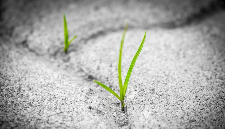 死後的生命:是希望