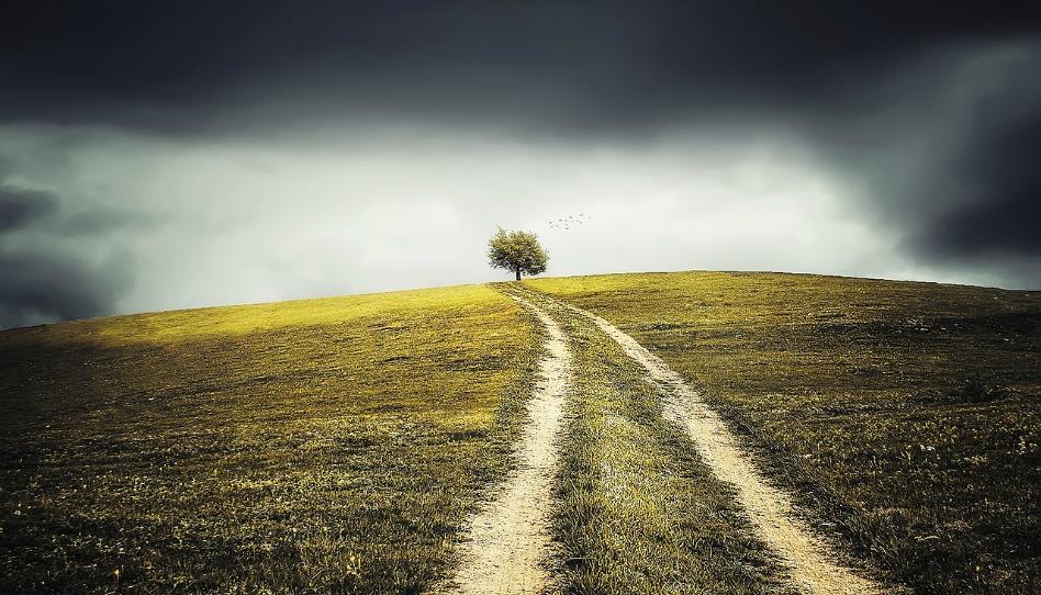 生命就是改變與成長