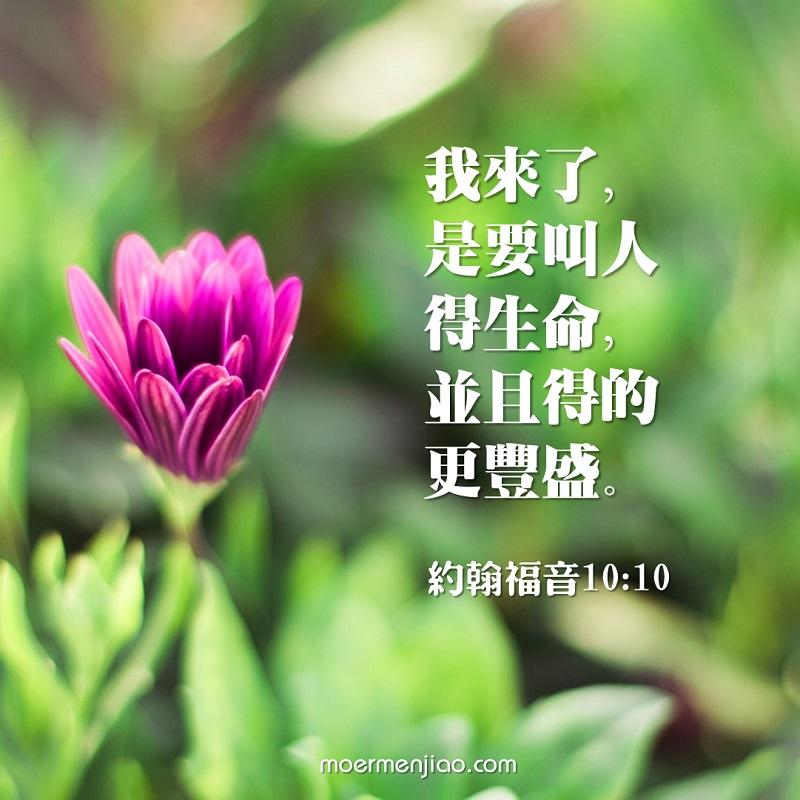 基督豐富我們的生命