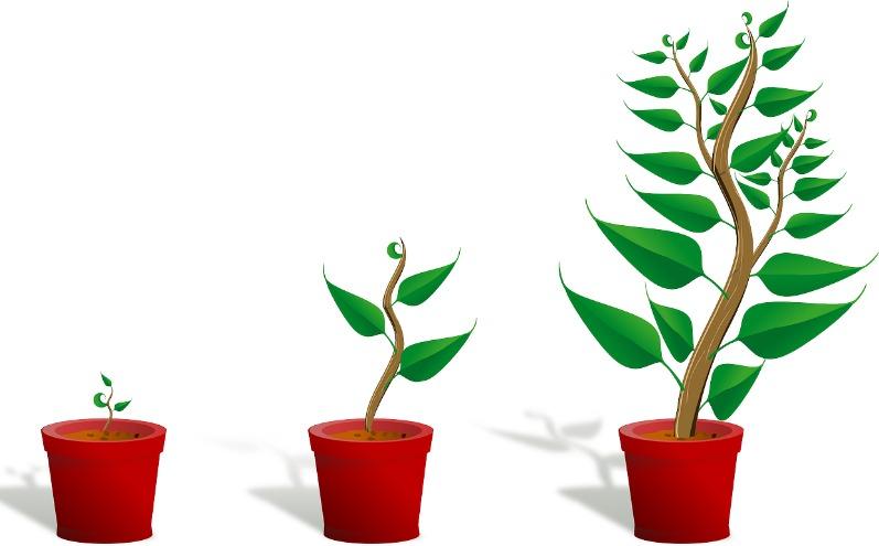 你可以改變、成長