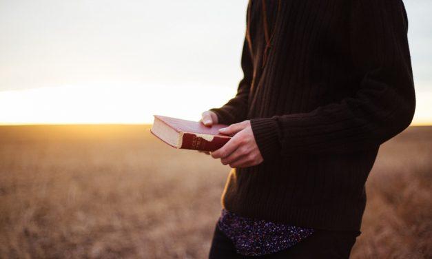 傳教教我的事:在服從與愛中找到平衡